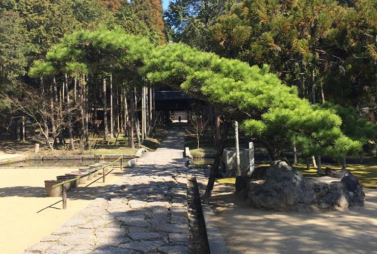第20回 【年内最後】11月29日(火) 大人の岡山定期坐禅会